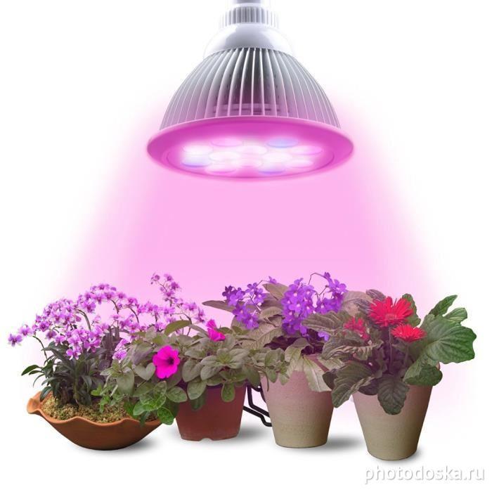 Geolighting, геолайтинг, фитолампы, светильники для растений, светильники для выращивания растений, светильники для роста растений, фитосветильник, фитолампа